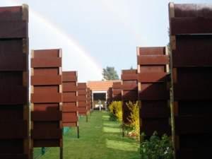 Allée du Roy d'un jardin d'arc pour le tir Beursault